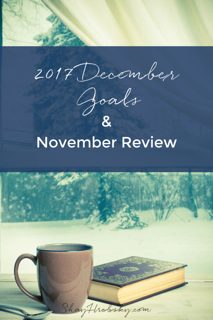 I'm sharing my December Goals and what I did/didn't do in November. Click to take a peek here!